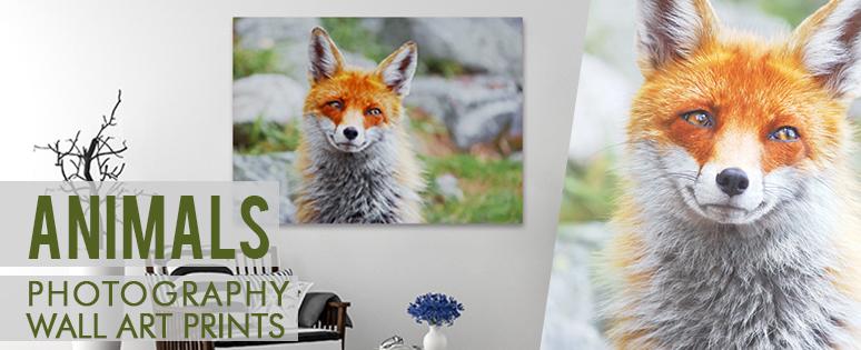 animal-banner-sample-16789.jpg