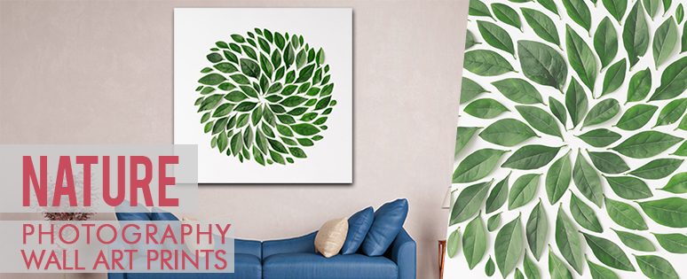 Nature Photography Style Prints For Office Walls