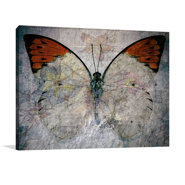 Abstract Butterfly Canvas Art