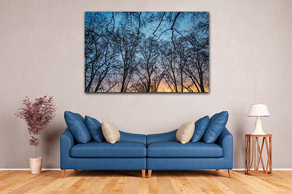 Abstract Trees Prints Canvas