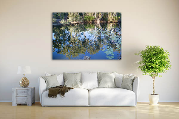 Adelaide River Crocodile Photo Wall Art