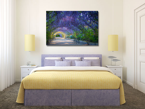Adelaide Wisteria Lane Print Artwork