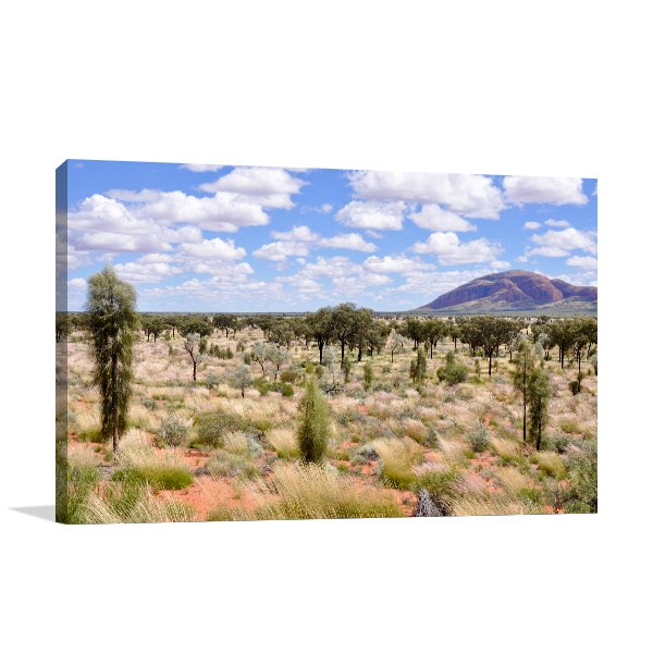 Alice Springs Desert Print Artwork