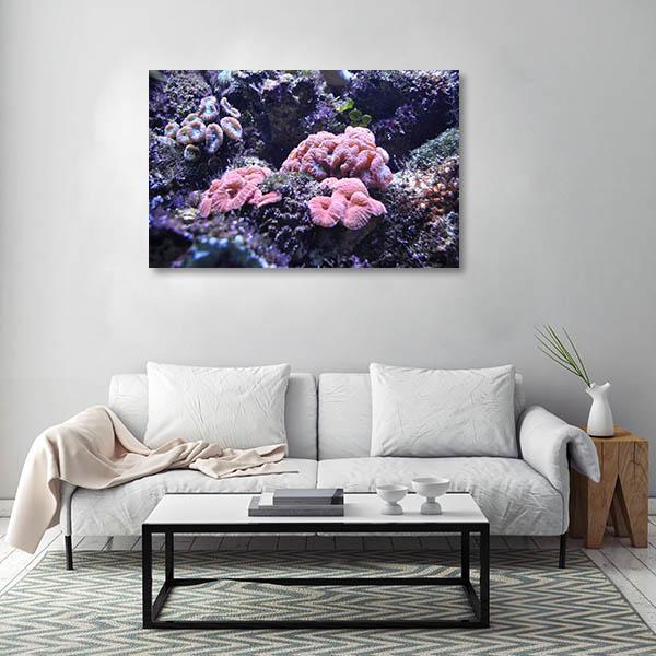 Aquarium Sydney Art Print Sea Anemone Artwork
