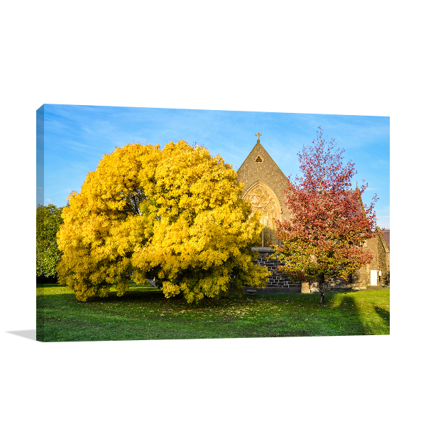 Autumn Colours in Ballarat Canvas Prints