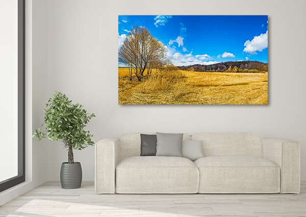 Autumn Colors Print Artwork