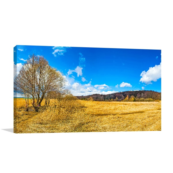 Autumn Colors Canvas Prints