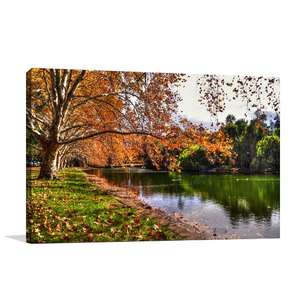 Autumn Hyde Park Perth Prints Canvas
