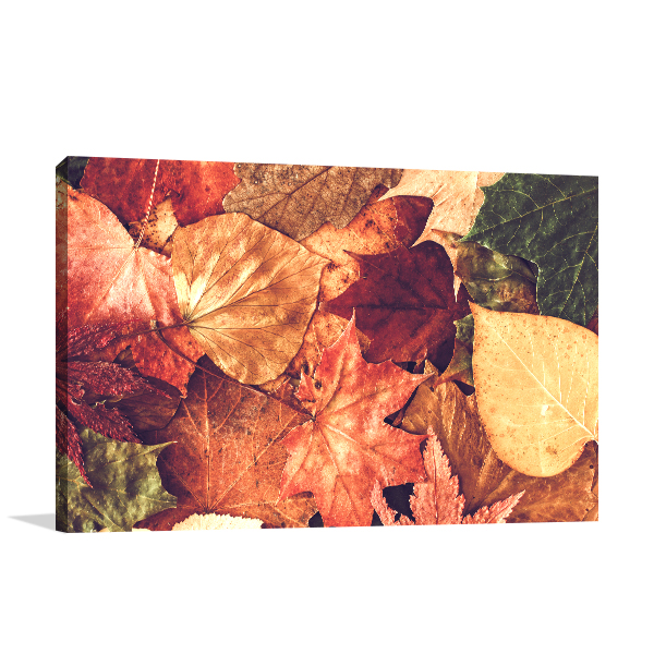 Autumn Leaves Wall Art