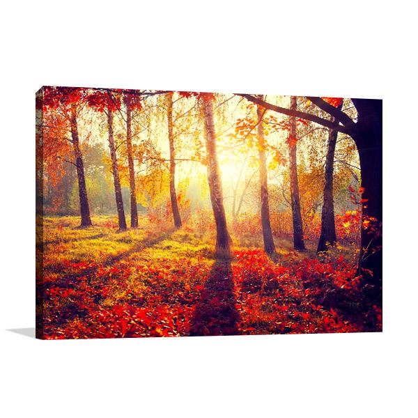 Autumn Sun Rays Art Prints
