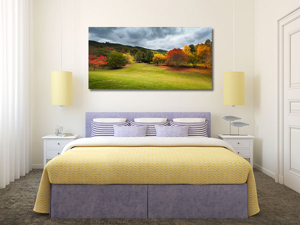 Autumn Trees Adelaide Hills Canvas Prints