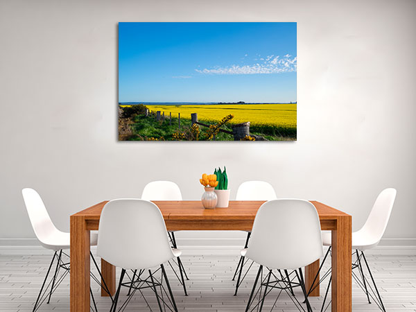 Ballarat Canola Field Artwork