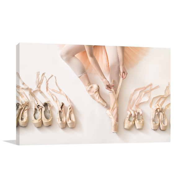 Ballet and Shoes Wall Art