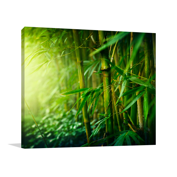 Bamboo Forest Prints Canvas