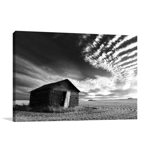 Barnhouse Alone Canvas Art