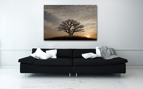 Barren Tree Prints Canvas