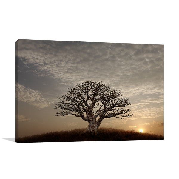 Barren Tree Canvas Art Prints