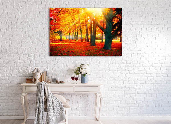 Beautiful Autumnal Park Canvas Art