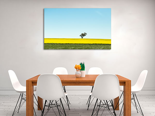 Beautiful Canola Mildura Art Prints