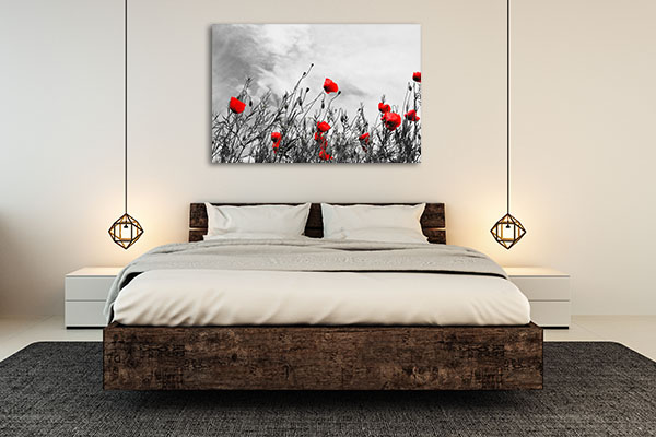 Beautiful Red Poppies Art Prints