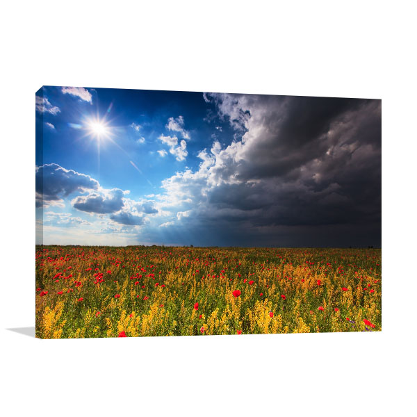 Beautiful Rural Scenery Canvas Art Prints