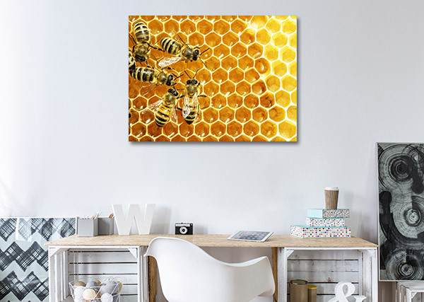 Bees on Honey Cells Wall Art