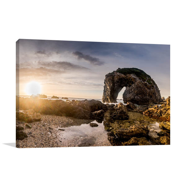 Bermagui Horse Head Rock Canvas Art
