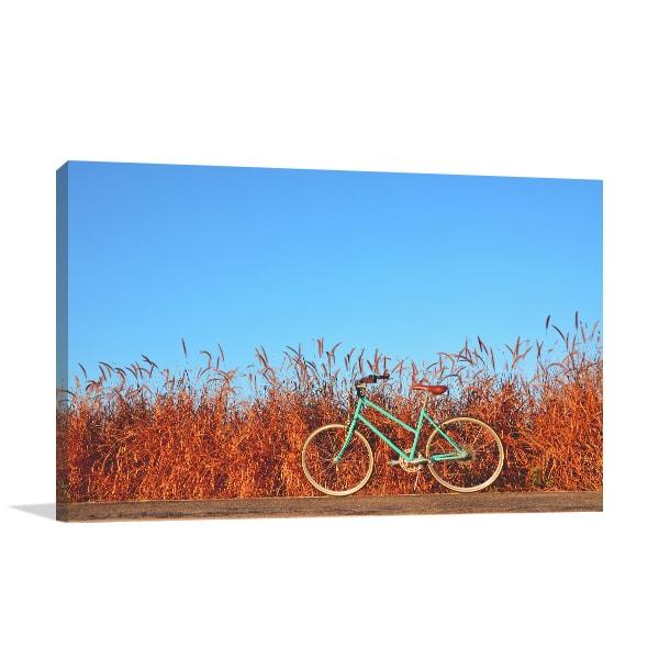 Bicycle on Road Art Prints