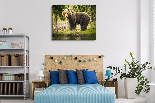 Big Brown Bear Canvas Prints