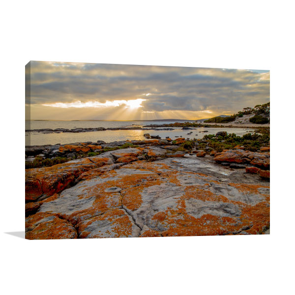 Billy Lights Sunrise Rays Prints Canvas