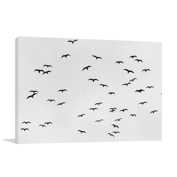Birds in Sky Wall Art Print Artwork