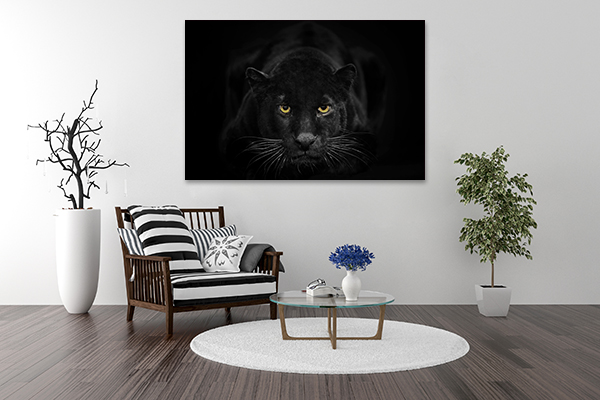 Black Leopard Art Print on the wall