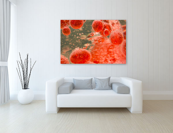 Blood Cells Wall Art Print Canvas Prints
