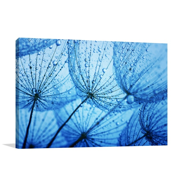 Blue Dandelion Canvas Art Print Artwork Blue Dandelion Canvas Art Print Prints  Canvas
