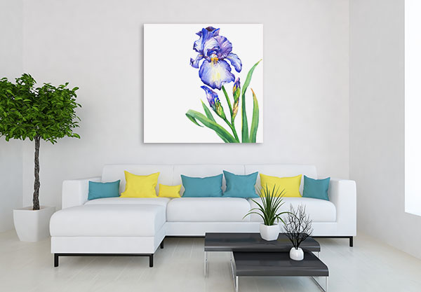Blue Iris Art Prints