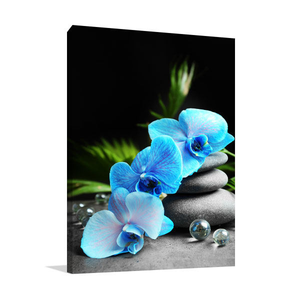 Blue Orchid And Stones Canvas Art Prints