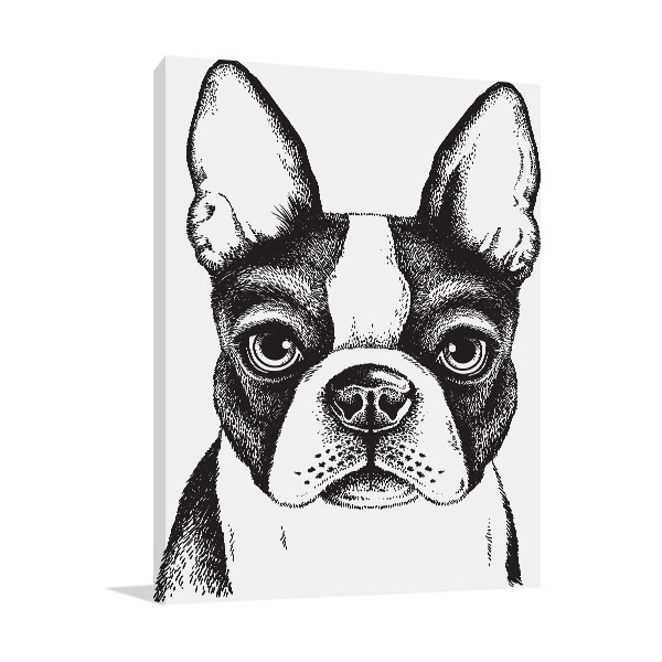 Boston Terrier Vector Prints Canvas