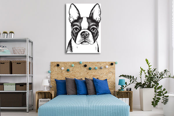 Boston Terrier Vector Canvas Art