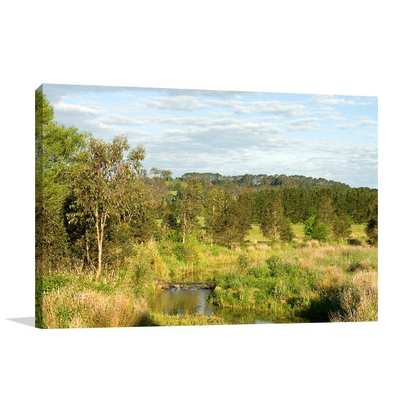 Bowral Wall Print Of Wingecarribee River Canvas Art