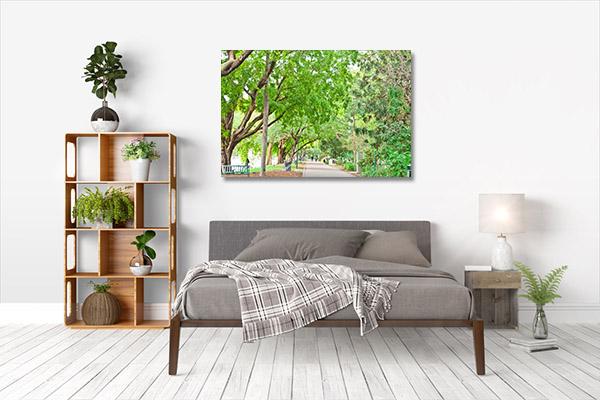 Brisbane CBD Art Print Botanic Garden Print Artwork