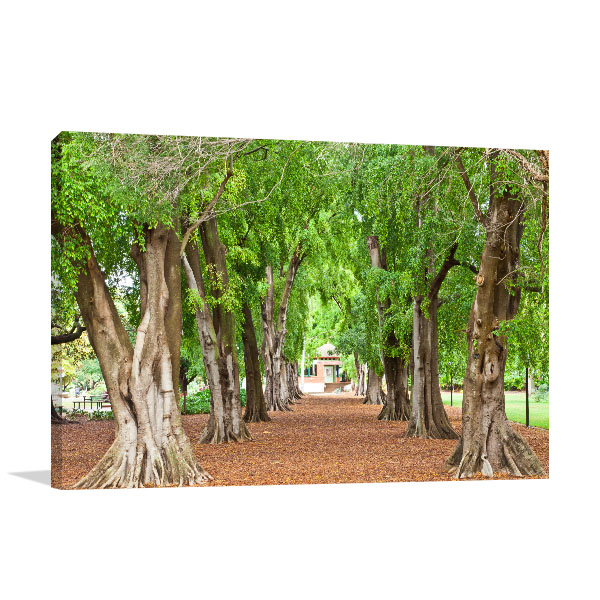 Garden Art Brisbane: Brisbane City Art Print Botanic Garden As Office Wall Art