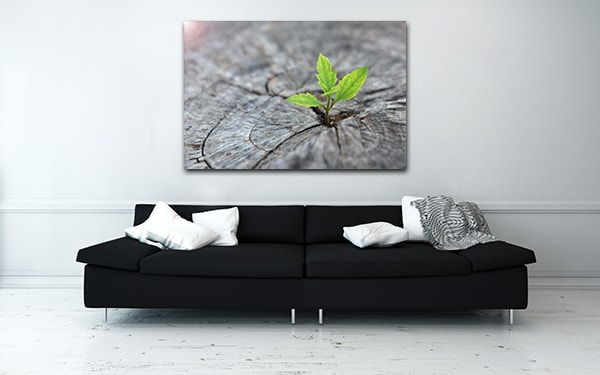 Budding Leaf Print Artwork