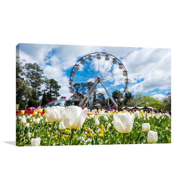 Canberra Floriade Festival Canvas Art Prints