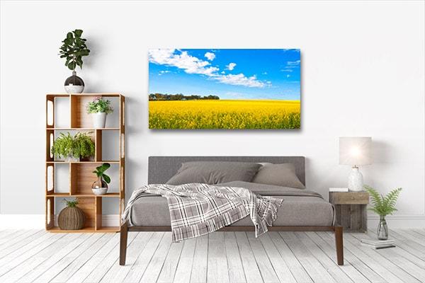 Canola Field Perth Canvas Prints