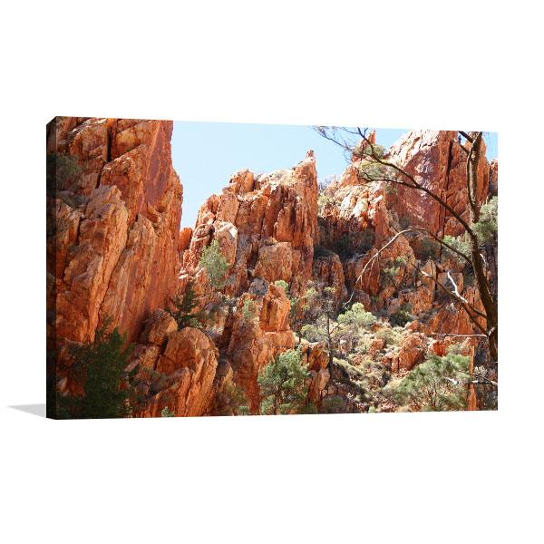 Canyon Darwin Art Prints