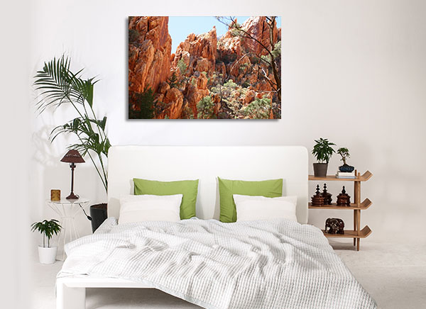 Canyon Darwin Artwork