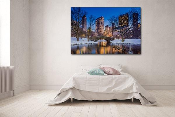 Central Park Winter Artwork