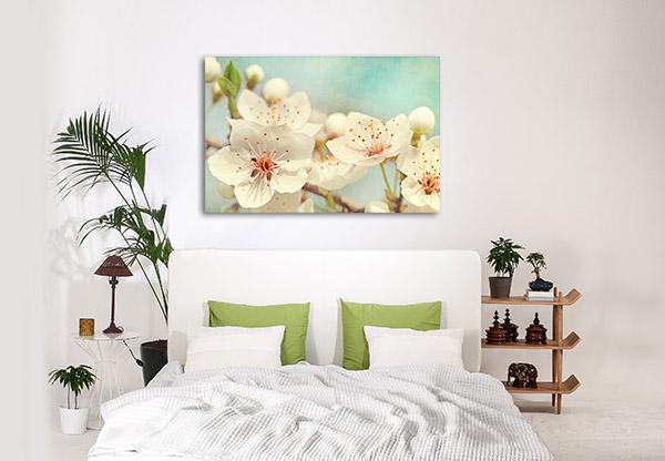 Cherry Blossoms Prints Canvas