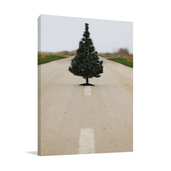 Christmas Tree on Road Prints Canvas
