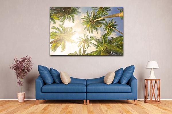 Coconut Tree Prints Canvas